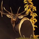 Elk Pedestal