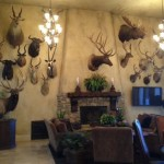 Steve Morgan's Trophy Room